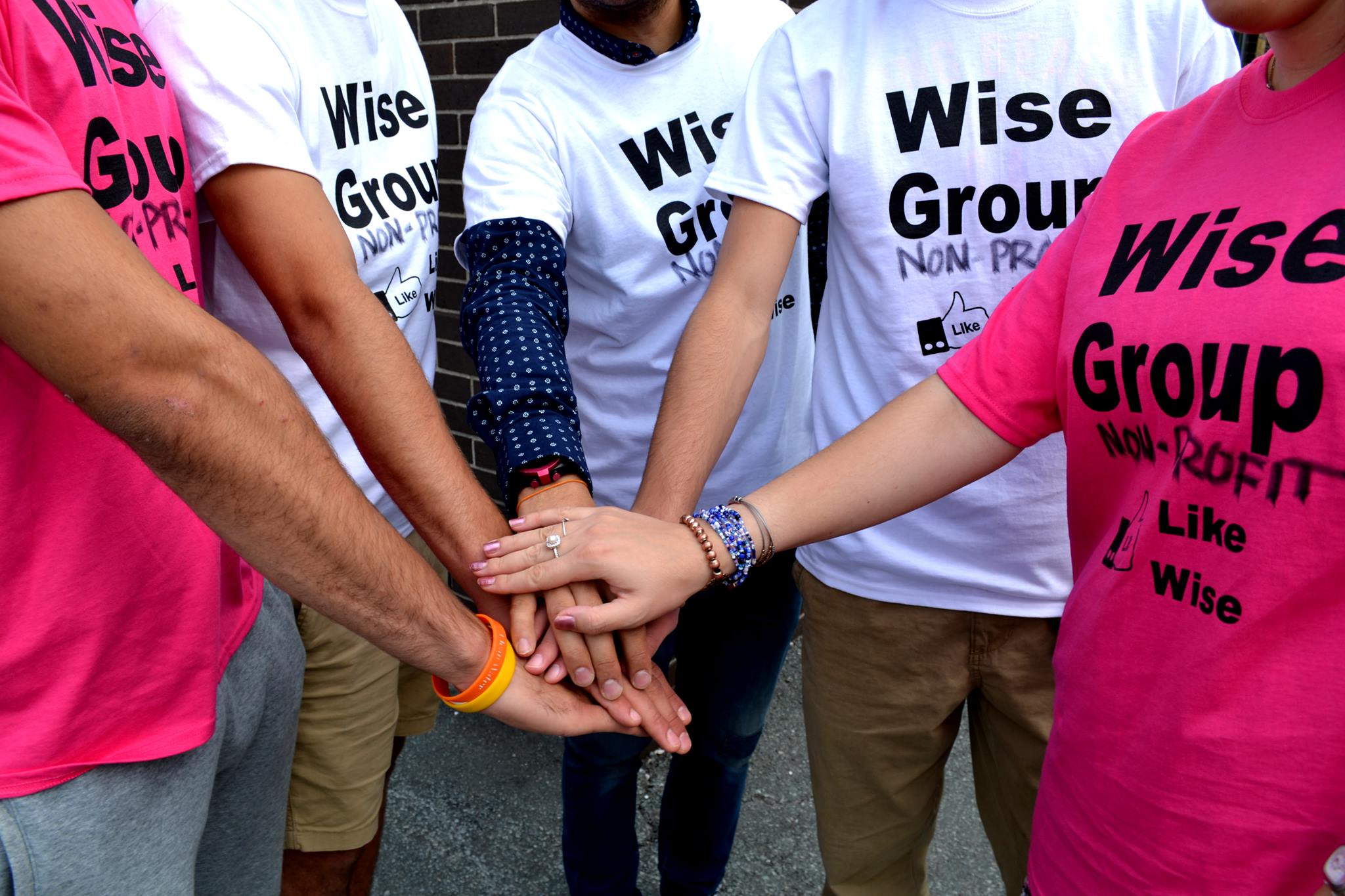 Wise Group Non-Profit Logo