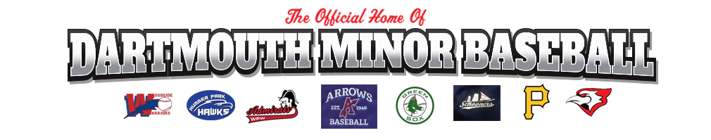 Dartmouth District Minor Baseball Association (DDMBA) Logo