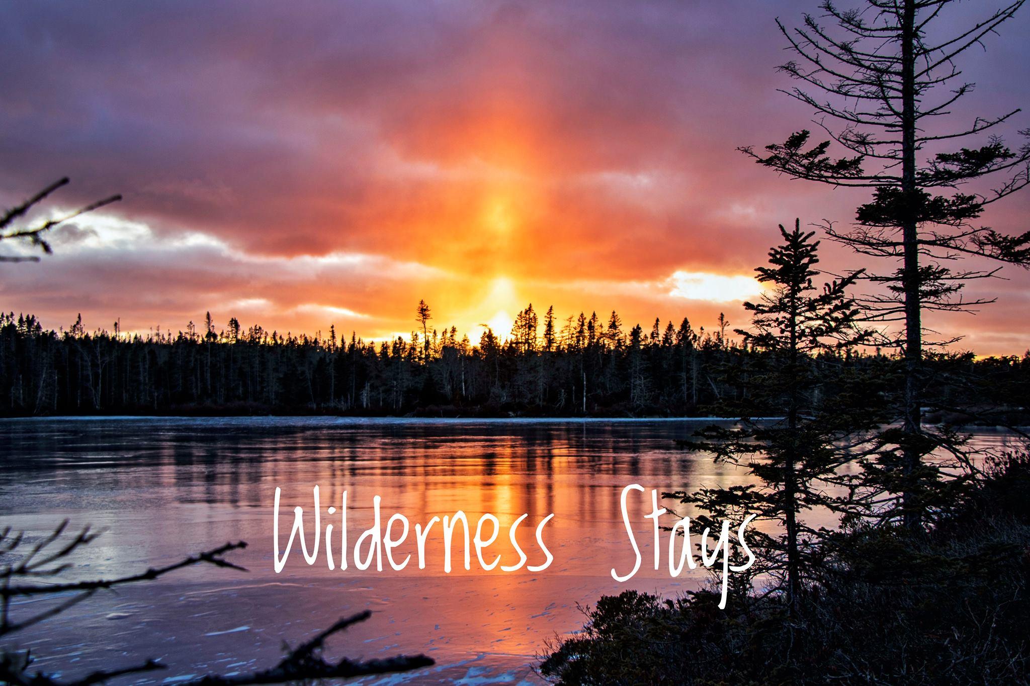 Wilderness Stays Limited Logo